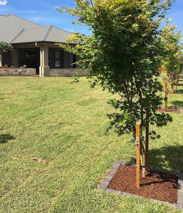 Landscaping and Turf Laying Pitt Town
